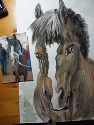 Favourite Pony by Xzaren