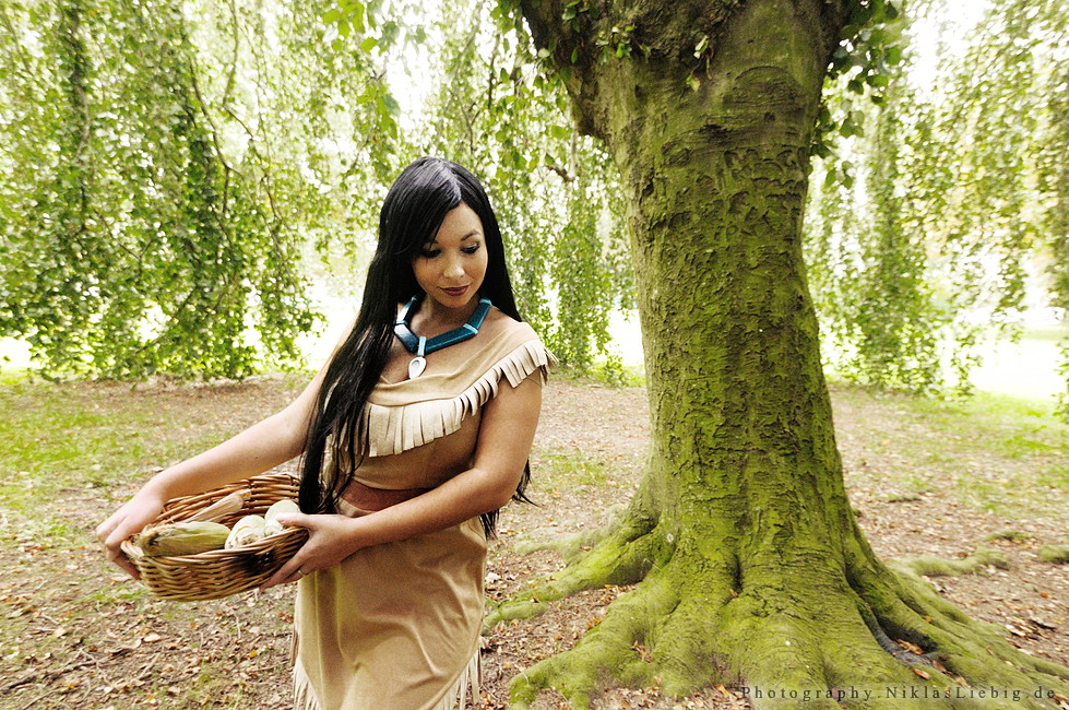 Pocahontas by NiklasLiebig