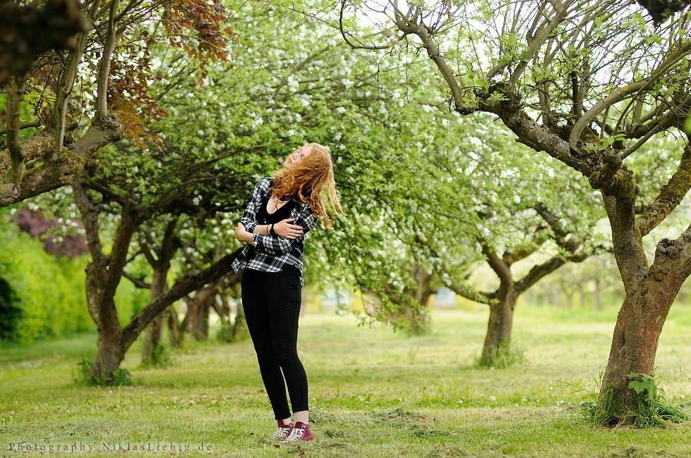 Apple blossom by NiklasLiebig