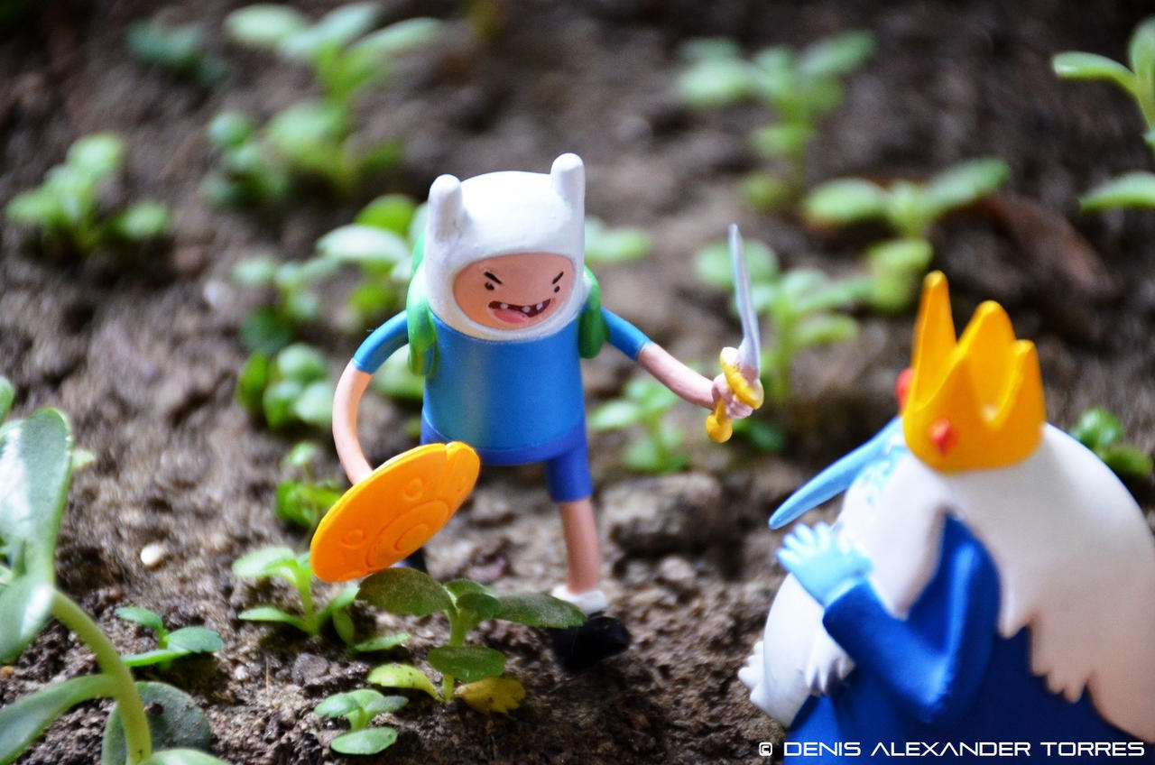 Aventure Time by torreoso