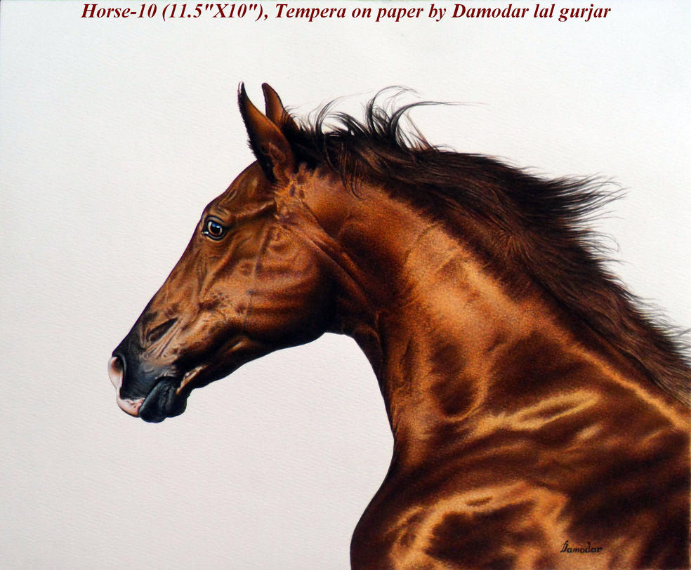 Horse Head painting by damodar - 149.3KB