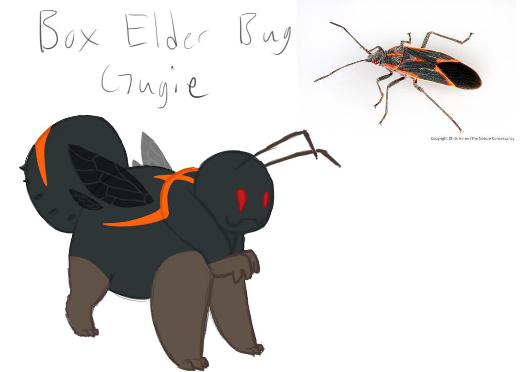 New Gungie character Box Elder Bug by TwistedTheFox