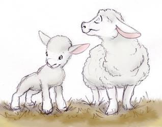 Sheep by ShoJoJim