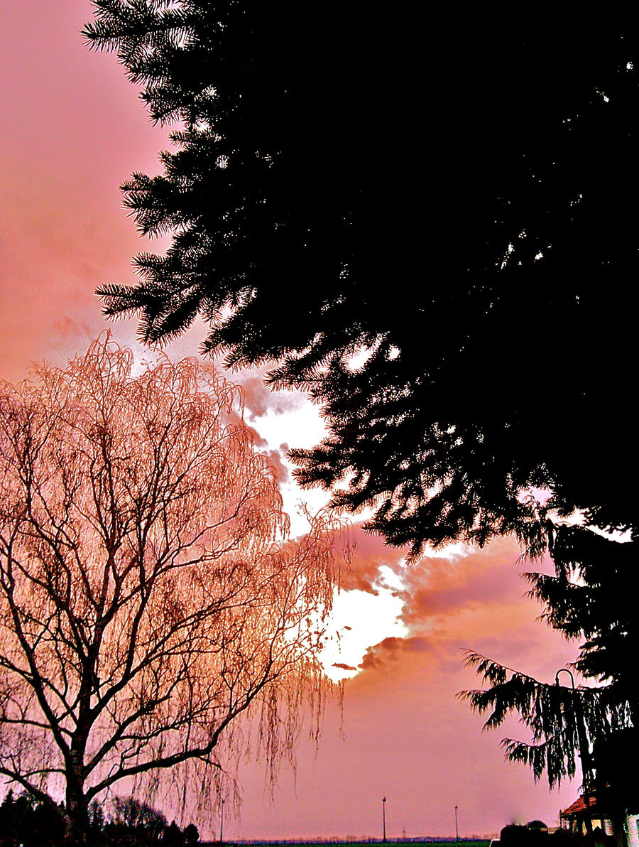 Sunrise by yu-oka