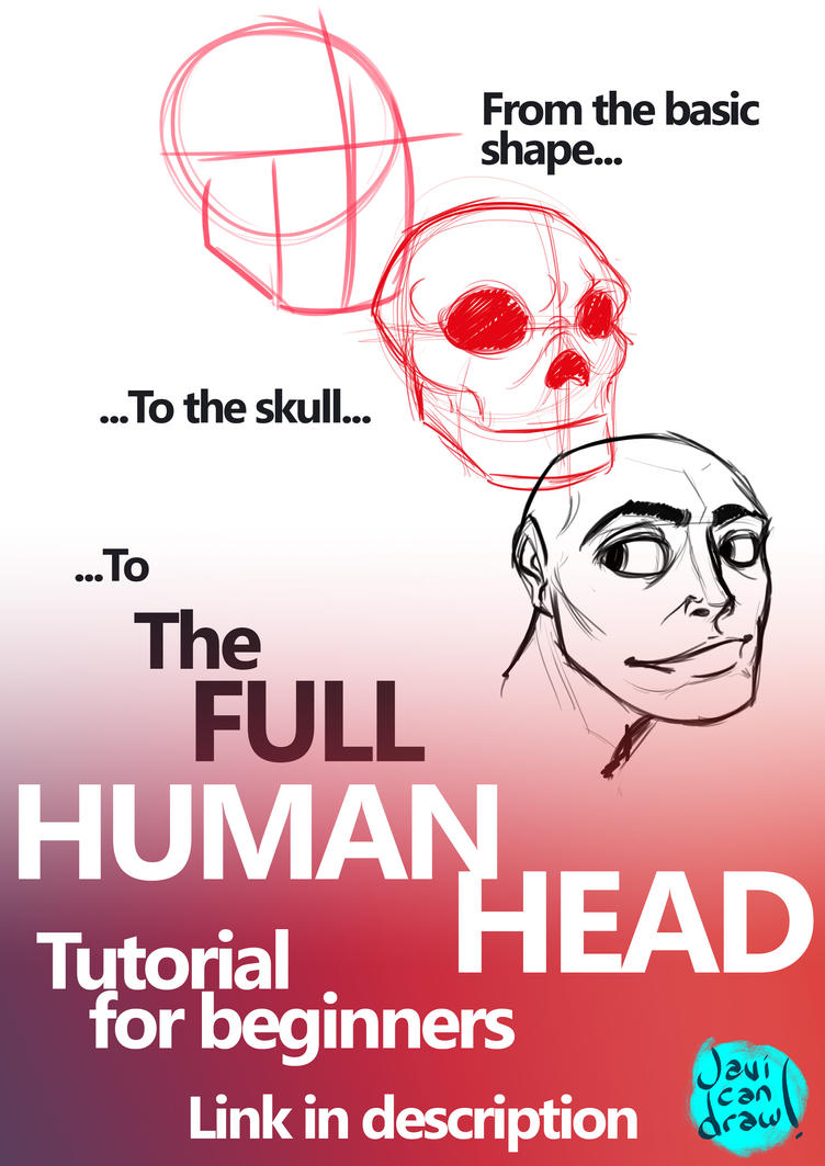 Human Head for beginners Video tutorial by javicandraw on DeviantArt