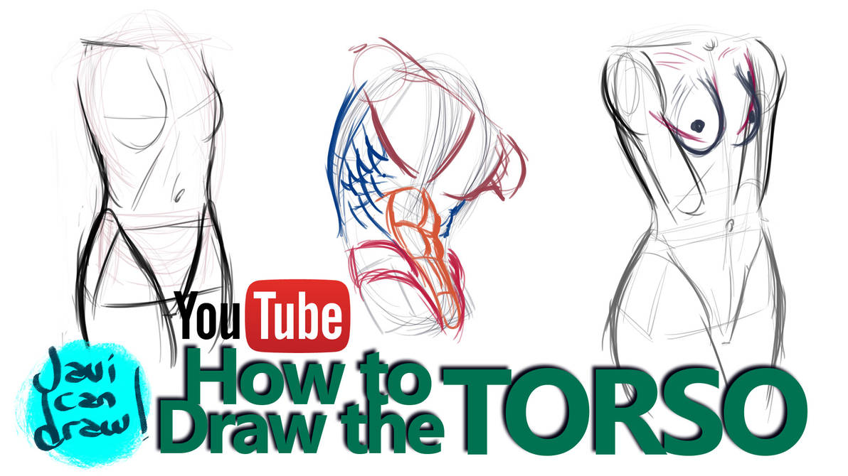 HOW TO DRAW THE MALE AND FEMALE TORSO - A tutorial by javicandraw