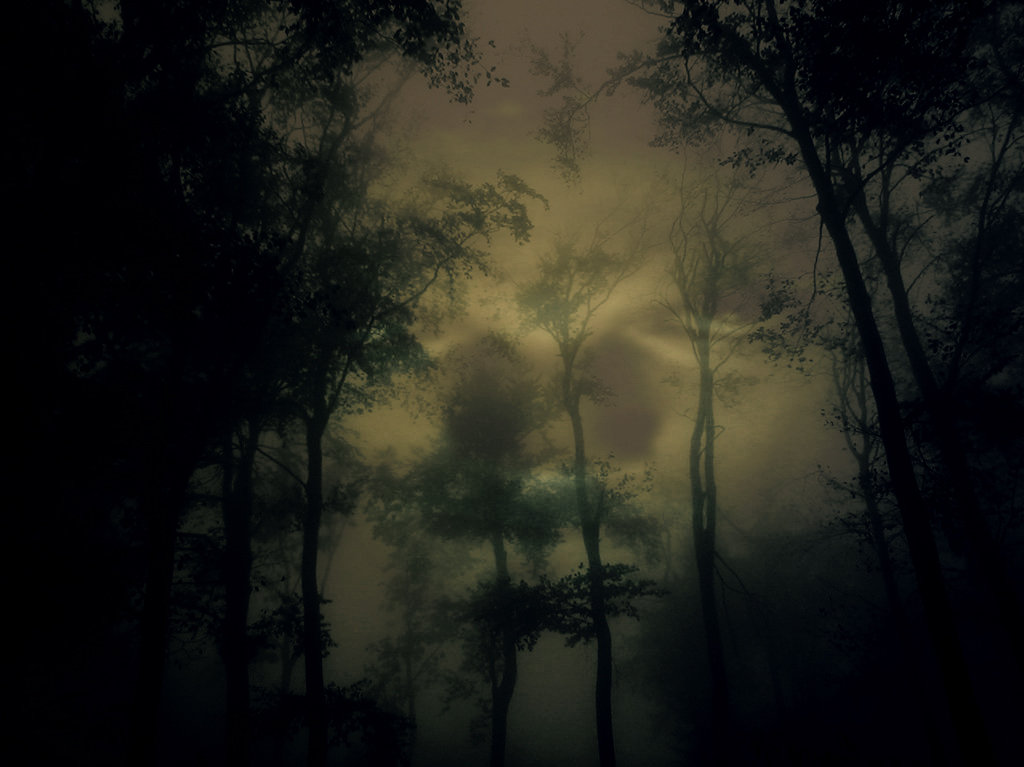 evil forest by syntheticbloob on deviantart
