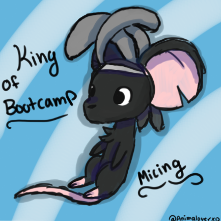 King Of Bootcamp by AnimaloverXD