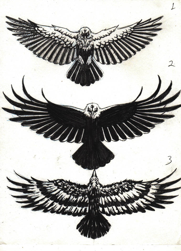 01ee02cfb Crow Tattoo Designs by marcAhix on DeviantArt