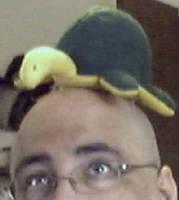 Turtle Plushy by sleepingwulf