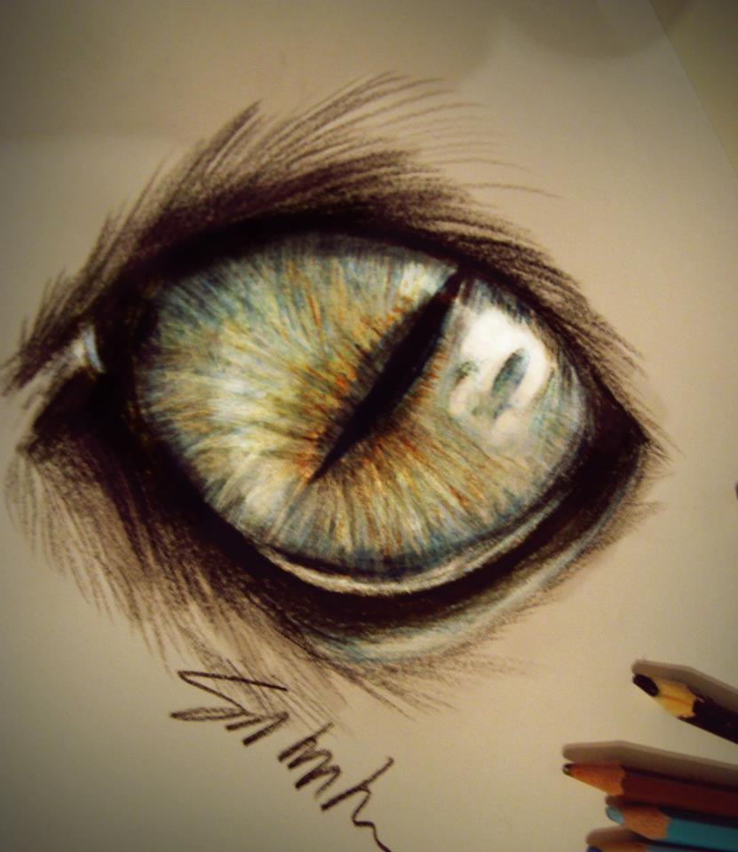 Cat's eye by Kinemesi on DeviantArt