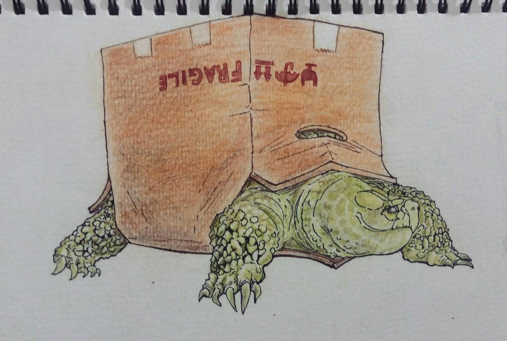 Happy Homeless Turtle by KingSHovka