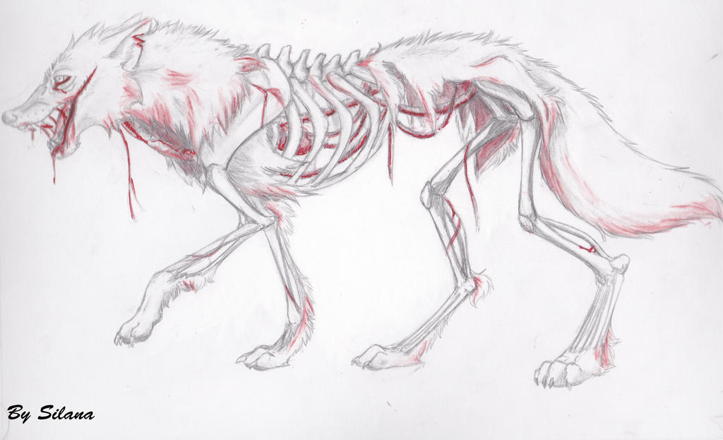 Zombie Wolf 394387286 on circulatory system coloring