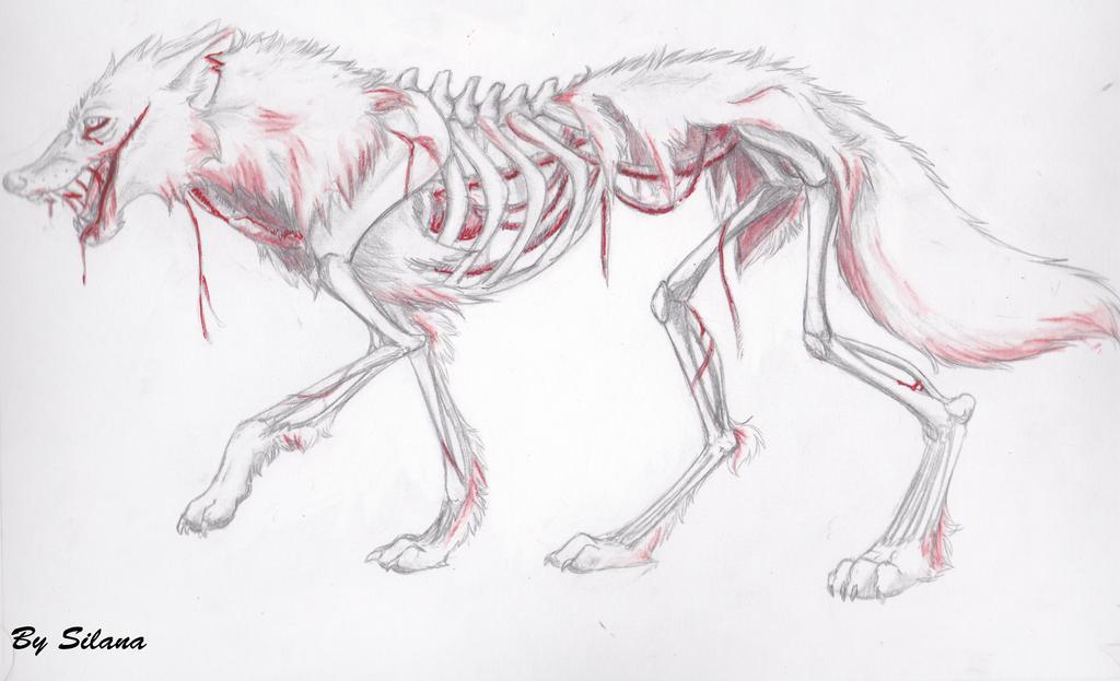 zombie wolf zombie wolf drawing zombie wolf zombie wolf drawing zombie    Zombie Wolf Drawing