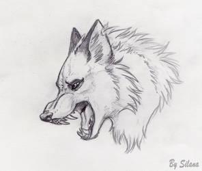 wolf head by SilanaVerley