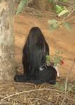 Black Rose 15
