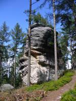 rock by neethea