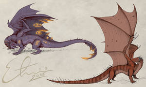 American Night Dragon n Australian Spiny Dragon
