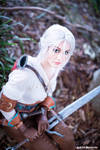 Zireael's choice - Witcher 3 cosplay