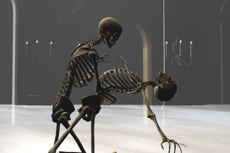Dancing Skeletons Chapter Summaries