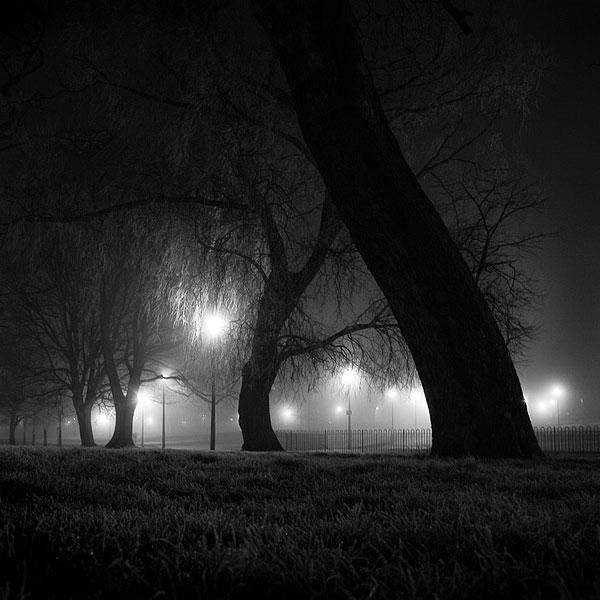Meadows, Edinburgh by kenic