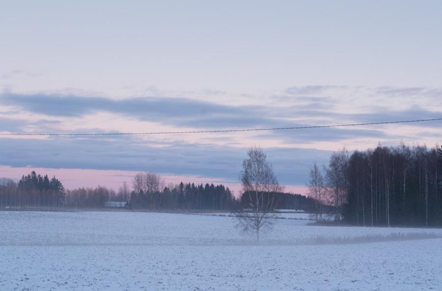 Snowy Field by Enalla