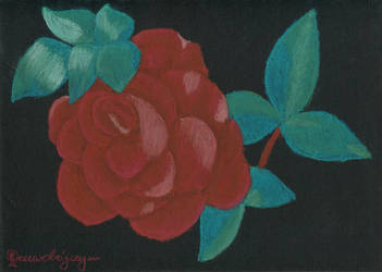Rose9 by Drzewobojczyni