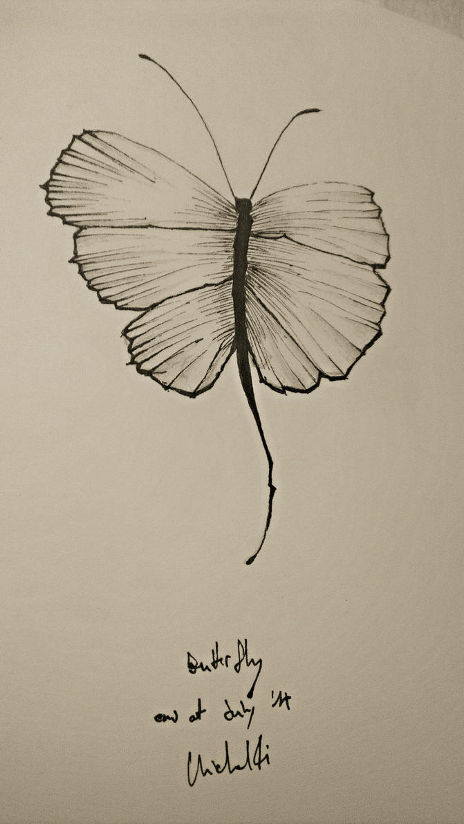 Butterfly by mudsflapp