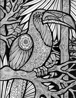 Lines of the Toucan (FOR SALE) by HGCreations