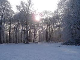 Snow by FrankAndCarySTOCK