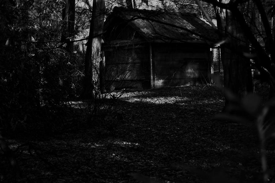 Cabin In The Woods By Frankandcarystock On Deviantart