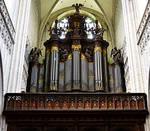 The Main Organ by FrankAndCarySTOCK