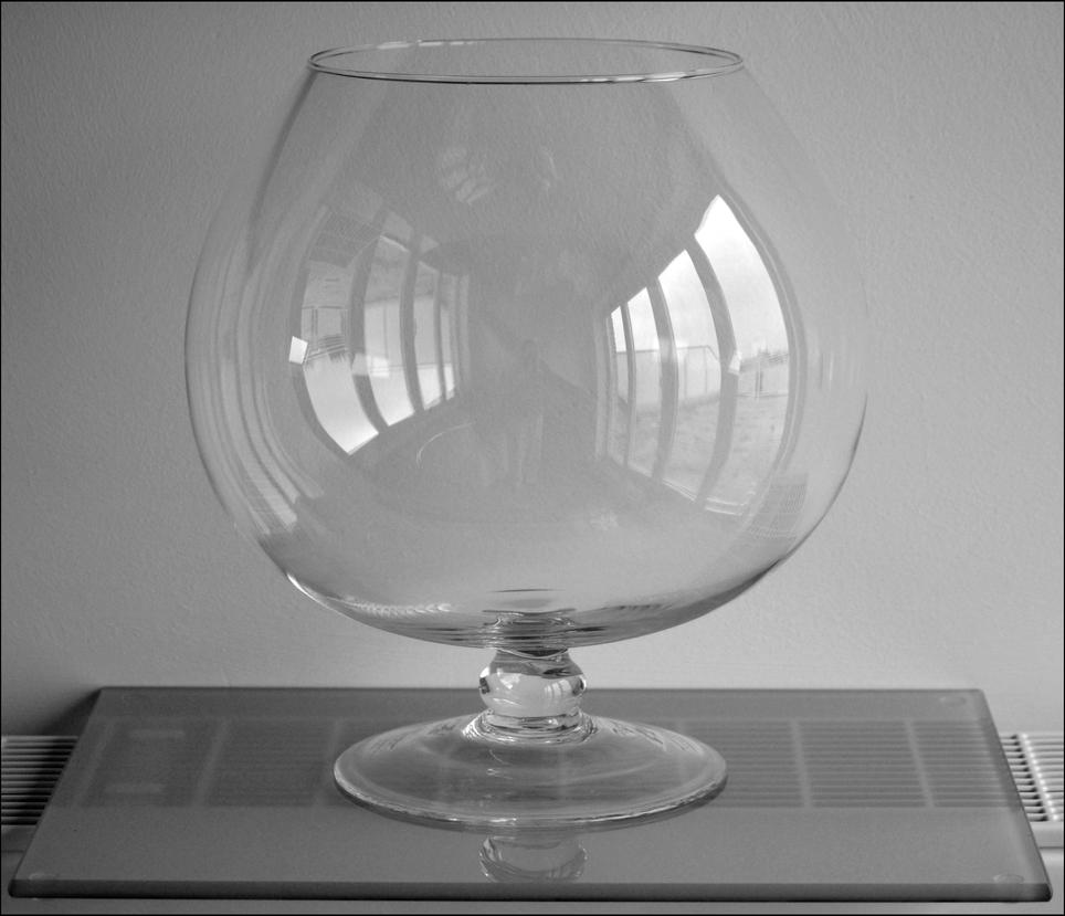 Glass vase by frankandcarystock on deviantart glass vase by frankandcarystock reviewsmspy