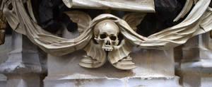 Skull Stock2