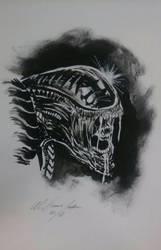 xenomorph inks by Baddahbing