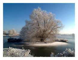 Winter Wonderland II by Digger36