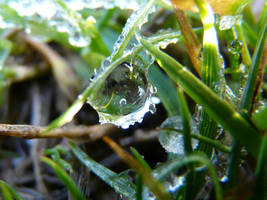 Ice Droplet by TunnelSight