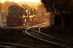 The-Train