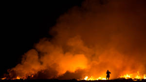Farmer Field and Fire