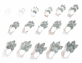 Hand to Hydra Paw