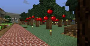 Harvest City Apple Trees