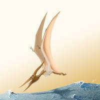 Pteranodon longiceps by TopGon