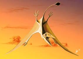 Ramphorhynchus by TopGon