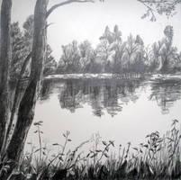 Lake by Milana87