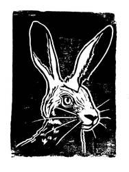 Hare by Milana87