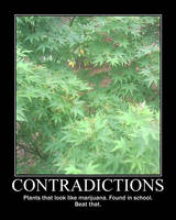 Contradictions V7 -demo- by Dragunov-EX