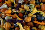 Autumn Harvest Wallpaper II by bluemangoimages