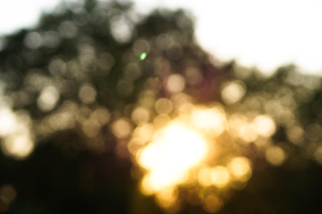 Sunrise in Bokeh by LimeSoftSolutions