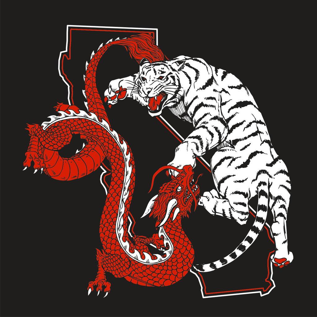 dragon tiger yin yang high res