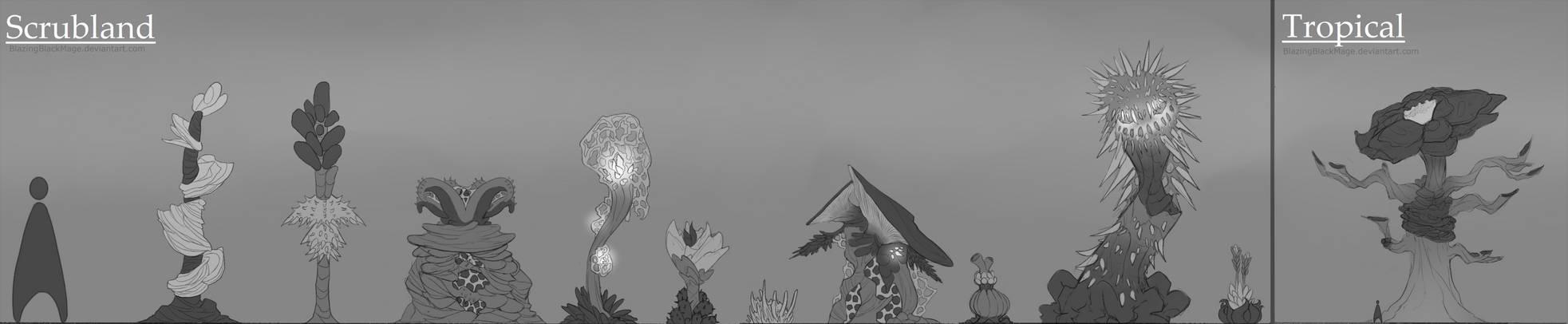 Triuncona Plant Concepts